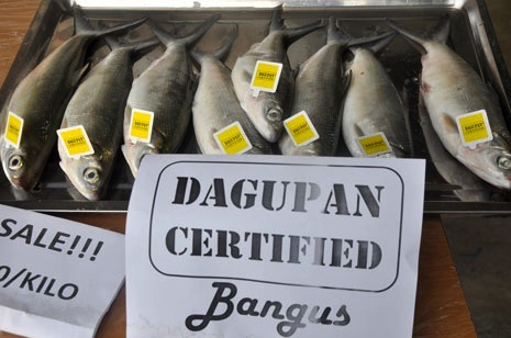 Start looking for 'Dagupan Certified' bangus tag