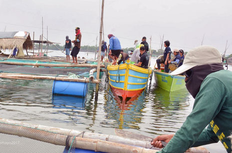 Demolition of illegal fish pens, cages ordered anew