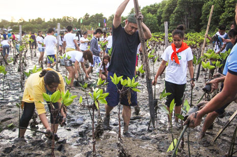 Gov. Pogi leads mangrove planting and distribution of mangrove seedlings